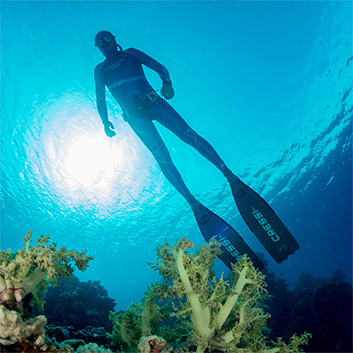 scuba dive - sale and special price
